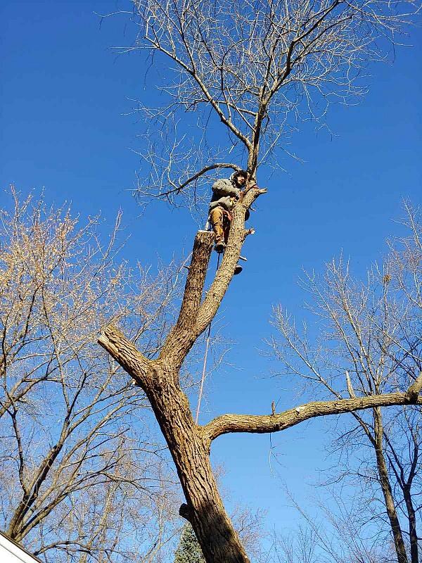 Skete Liturgy 1